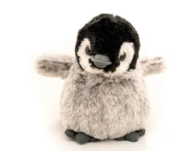Playful Penguin2